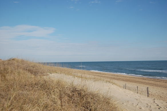 This photo is from a recent trip to the Outer Banks in North Carolina.